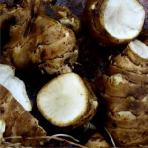 maapirni-sort-bianca